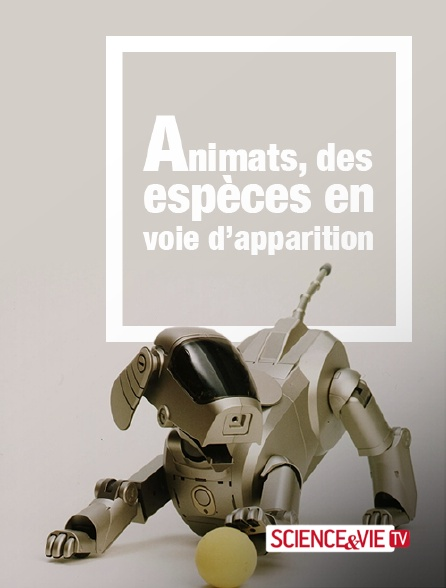 Science et Vie TV - Animats, des espèces en voie d'apparition