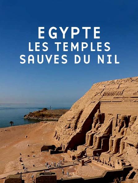 Egypte : les temples sauvés du Nil