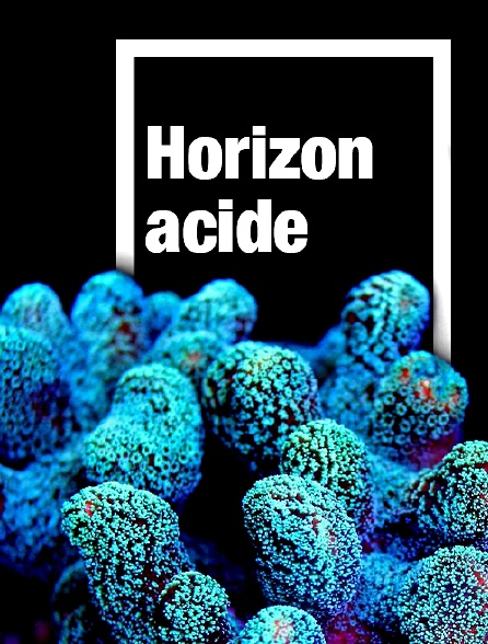 Horizon acide