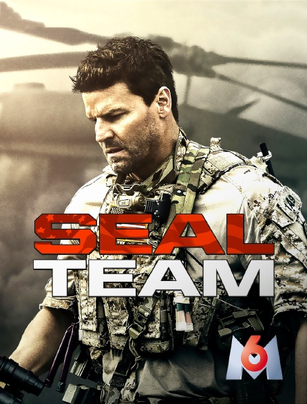 M6 - SEAL Team
