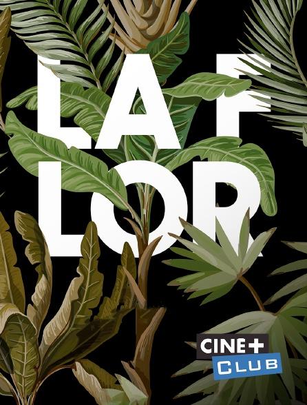 Ciné+ Club - La flor