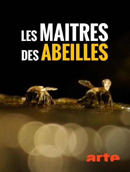 Arte - Les maîtres des abeilles