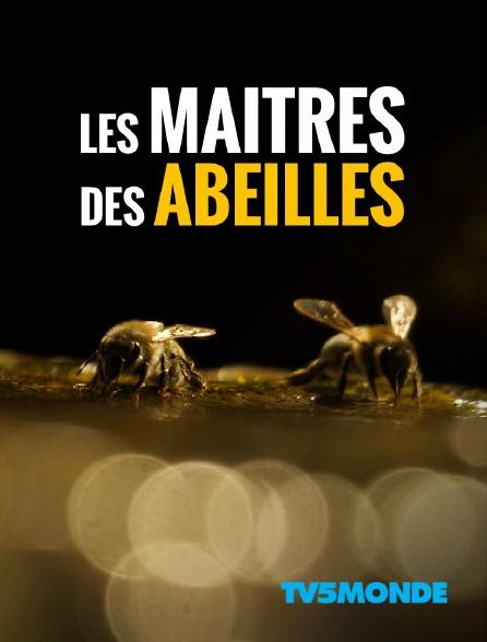 TV5MONDE - Les maîtres des abeilles