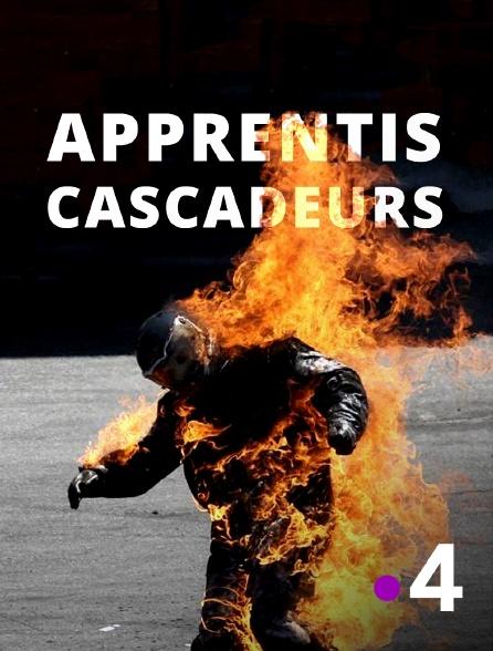 France 4 - Apprentis cascadeurs