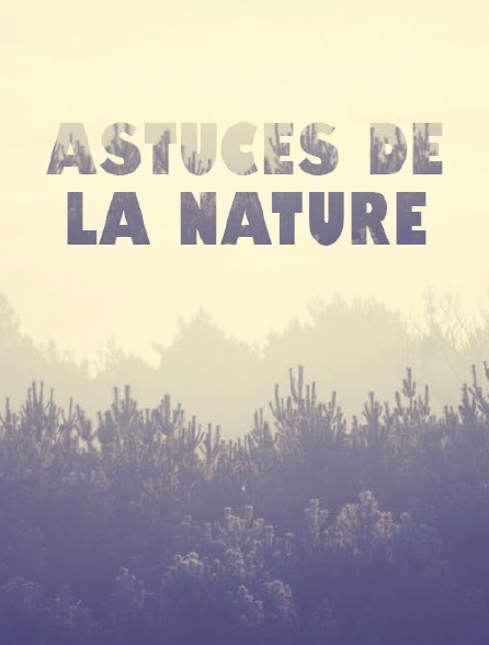 Astuces de la nature