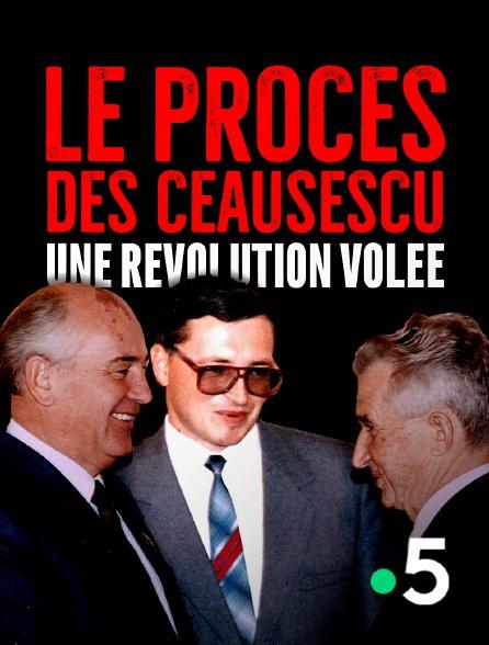 France 5 - Le procès des Ceausescu : une révolution volée