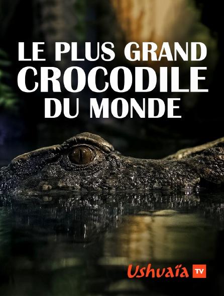 Ushuaïa TV - Le plus grand crocodile du monde