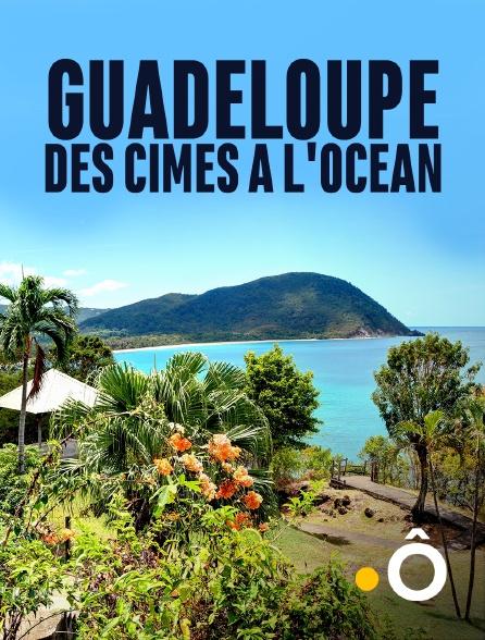France Ô - Guadeloupe, des cimes à l'océan