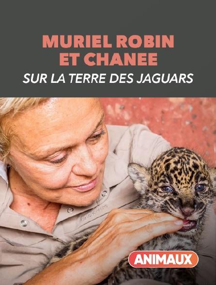 Animaux - Muriel Robin et Chanee sur la terre des jaguars
