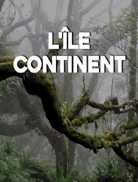 L'île continent