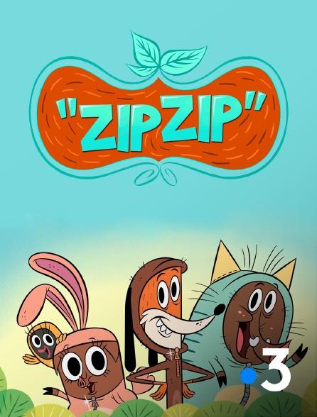 France 3 - Zip Zip
