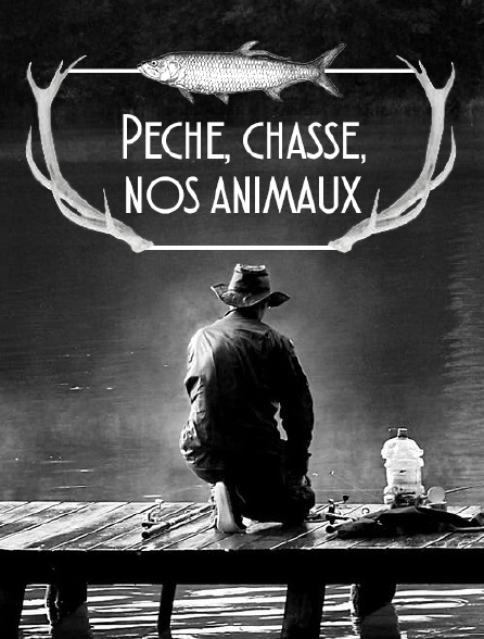 Pêche, chasse, nos animaux