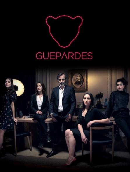 Guépardes