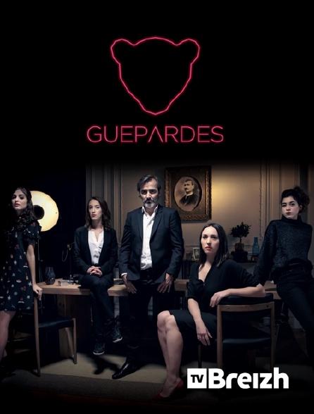 TvBreizh - Guépardes