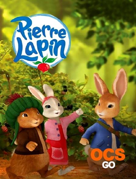 OCS Go - Pierre Lapin