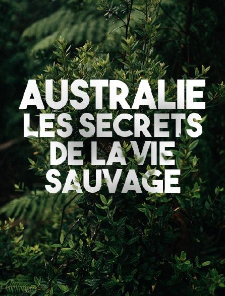 Australie, les secrets de la vie sauvage