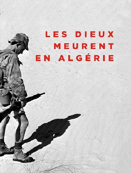 Les dieux meurent en Algérie