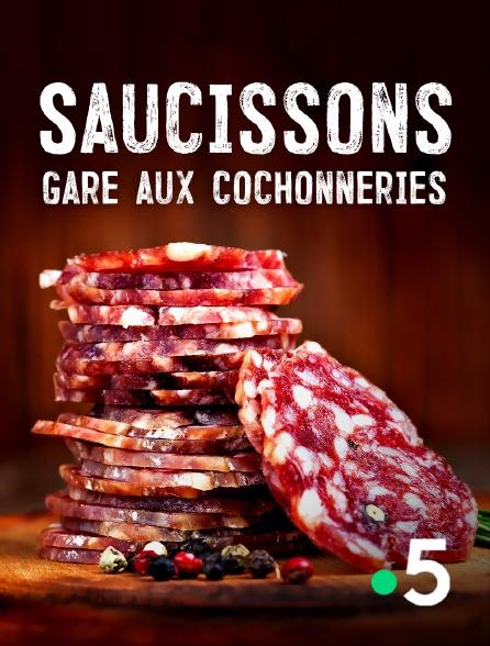 France 5 - Saucissons, gare aux cochonneries