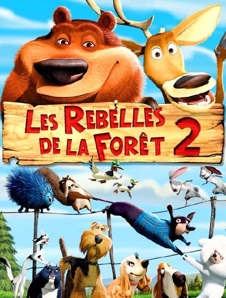 Les Rebelles De La Forêt 2 En Streaming Molotov Tv