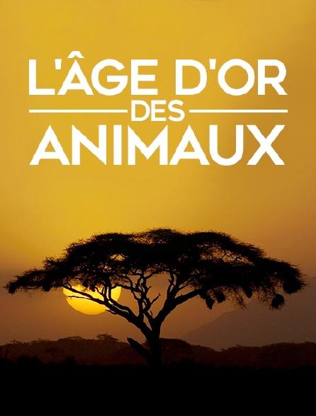 L'âge d'or des animaux