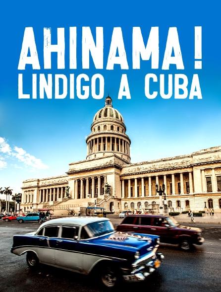 Ahinama ! Lindigo à Cuba