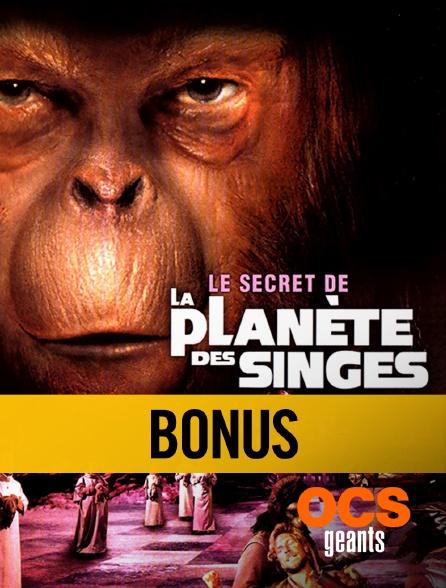 OCS Géants - Le secret de la planète des singes, le bonus