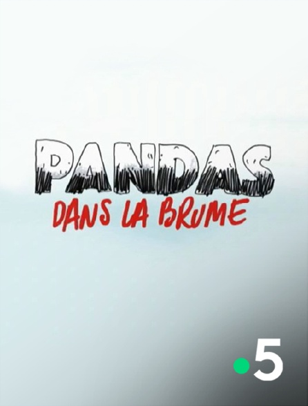 France 5 - Pandas dans la brume