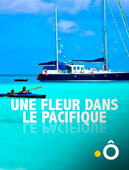 France Ô - Une fleur dans le Pacifique