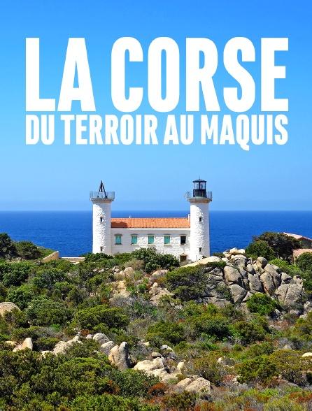 La Corse, du terroir au maquis
