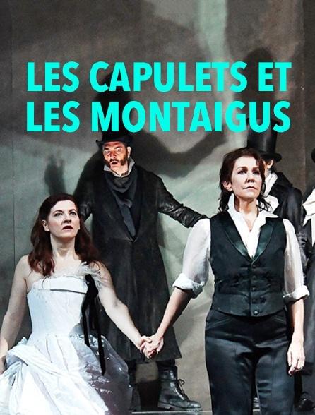 Les Capulets et les Montaigus