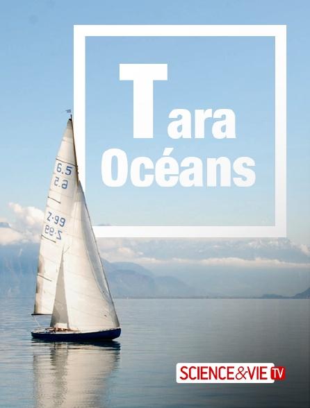 Science et Vie TV - Tara Océans