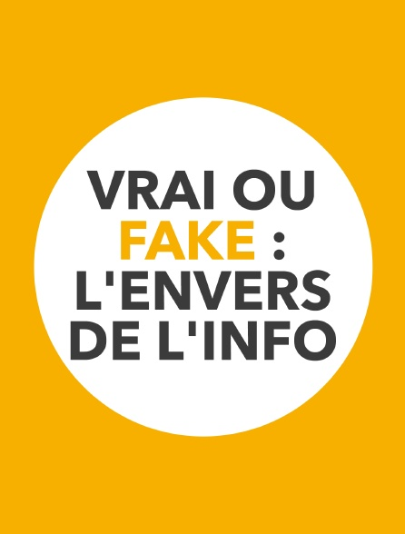 Vrai ou fake : l'envers de l'info