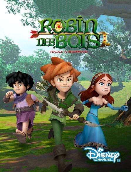 Disney Channel +1 - Robin des Bois : malice à Sherwood