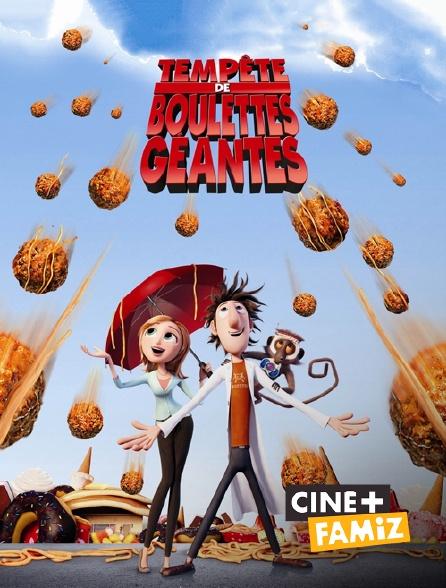 Ciné+ Famiz - Tempête de boulettes géantes