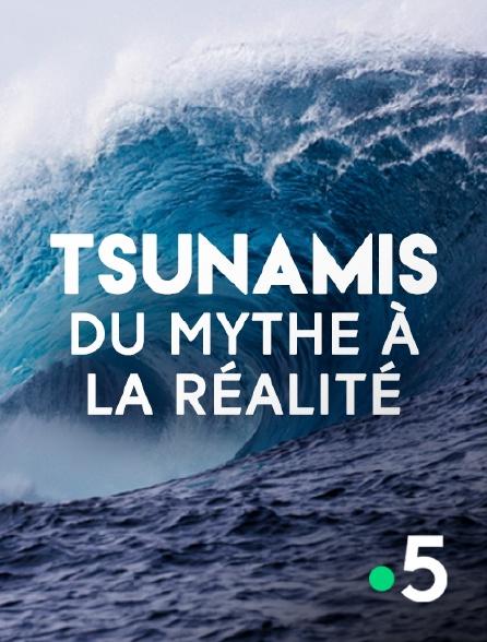 France 5 - Tsunamis, du mythe à la réalité