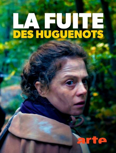 Arte - La fuite des huguenots