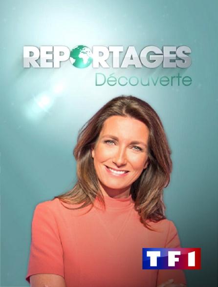 TF1 - Reportages découverte