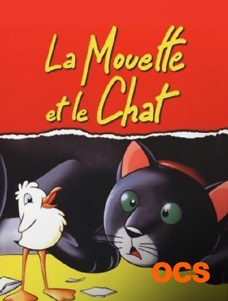 OCS - La mouette et le chat