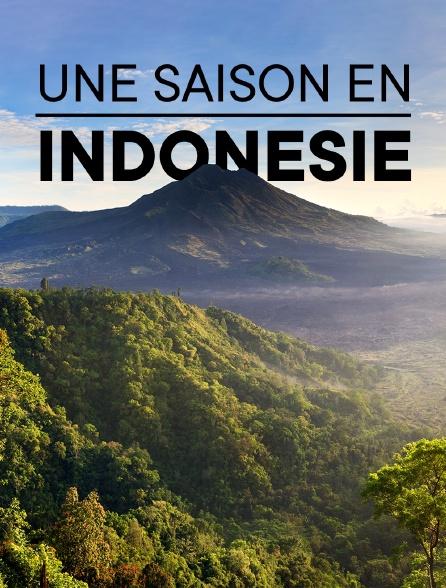 Une saison en Indonésie