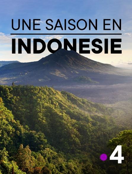 France 4 - Une saison en Indonésie