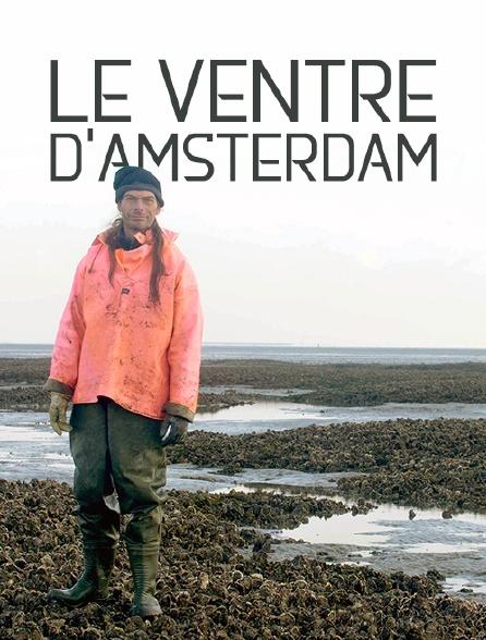Le ventre d'Amsterdam