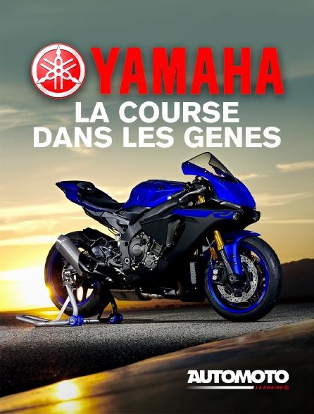 Automoto - Yamaha, la course dans les gènes