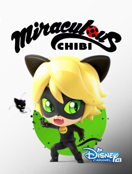 Disney Channel +1 - Miraculous Chibi