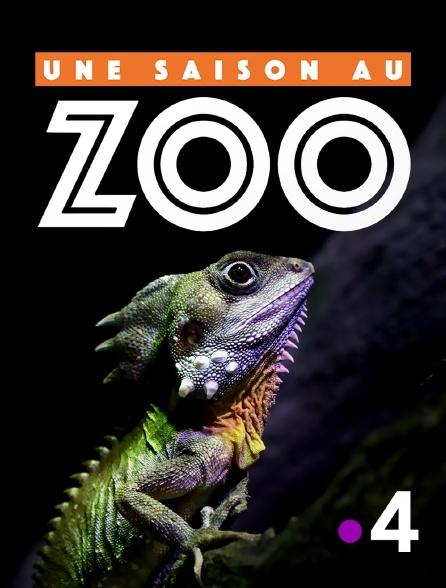 France 4 - Une saison au zoo