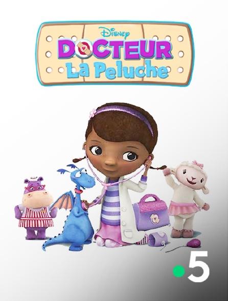 France 5 - Docteur La Peluche