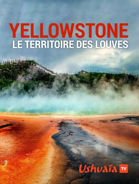 Ushuaïa TV - Yellowstone : le territoire des louves