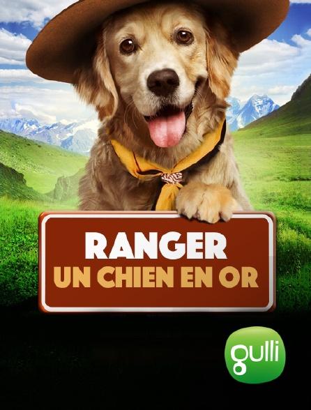Gulli - Ranger, un chien en or