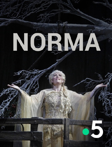 France 5 - Norma