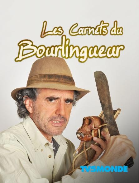 TV5MONDE - Les carnets du bourlingueur