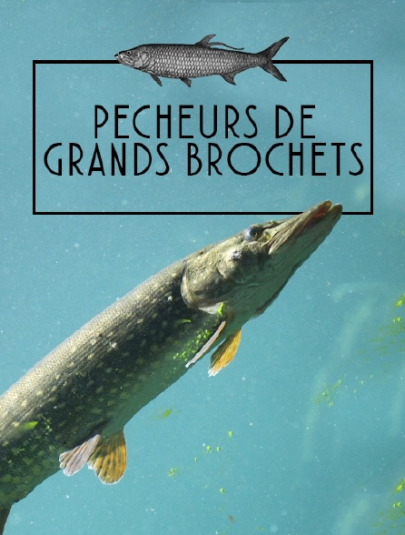 Pêcheurs de grands brochets